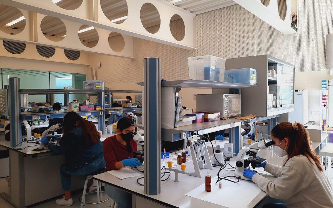 La Universidad San Jorge acoge la fase práctica de la Olimpiada Española de Biología