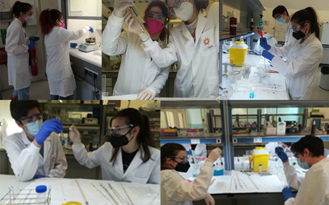 Alumnos de Bioinformática aprenden cómo reaccionan diferentes compuestos gracias a las prácticas en el laboratorio