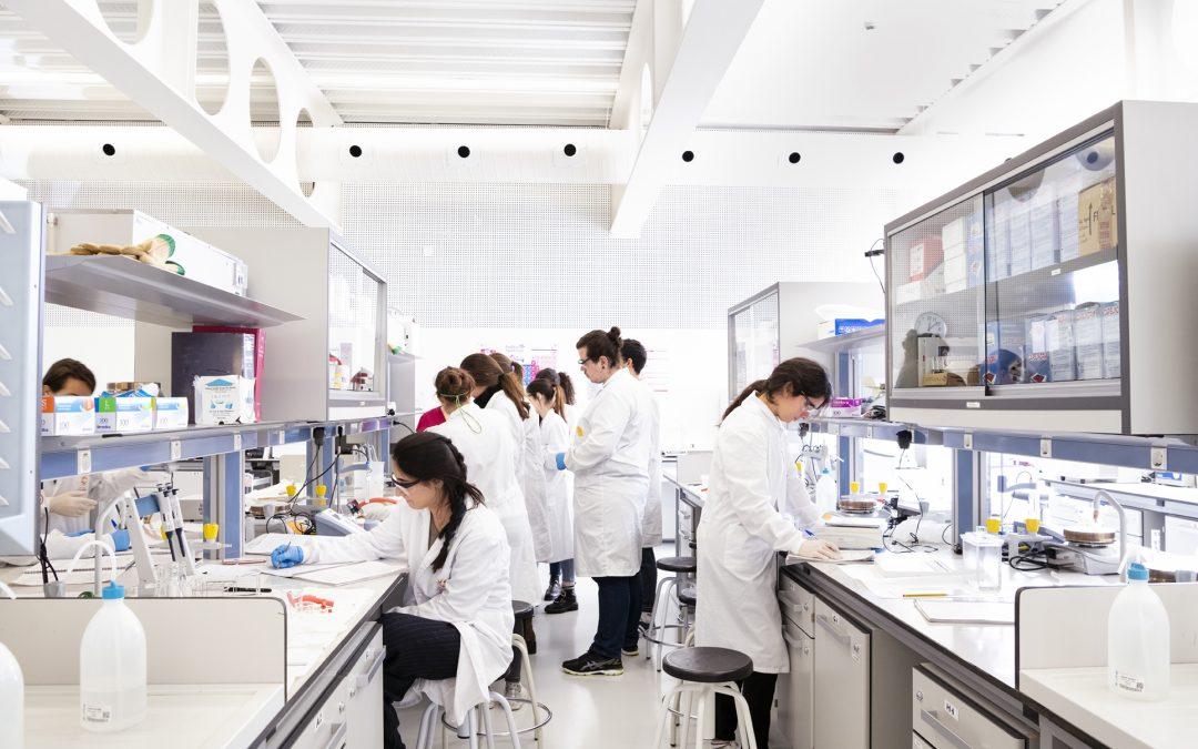 Bioinformática, la ciencia para aprender sobre todas las disciplinas STEM