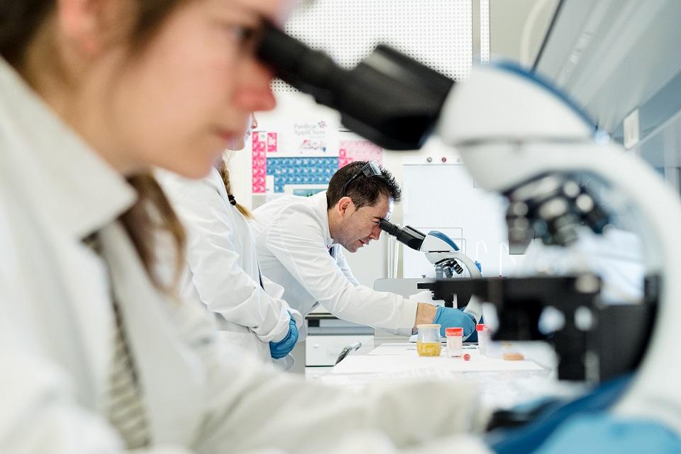 El Gobierno de Aragón reconoce nueve grupos de investigación de la USJ: dos de referencia y siete en desarrollo