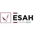 Logo Estudios Superiores Abiertos de Hostelería (ESAH)