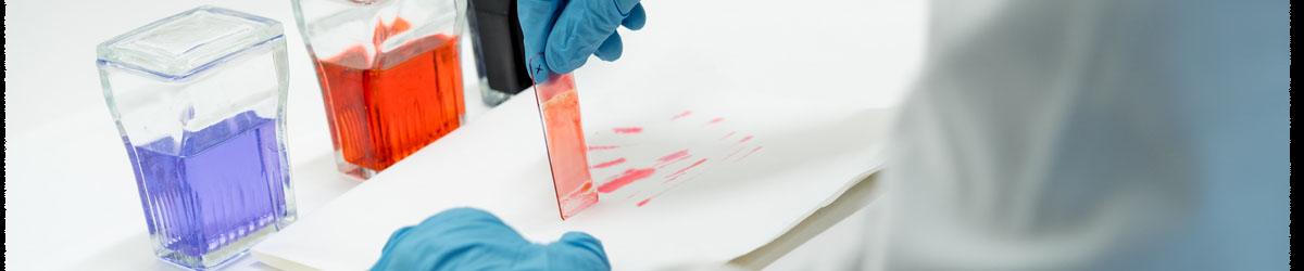 Prácticas en laboratorio de los alumnos del grado en Farmacia en los laboratorios de la Facultad de Ciencias de la Salud