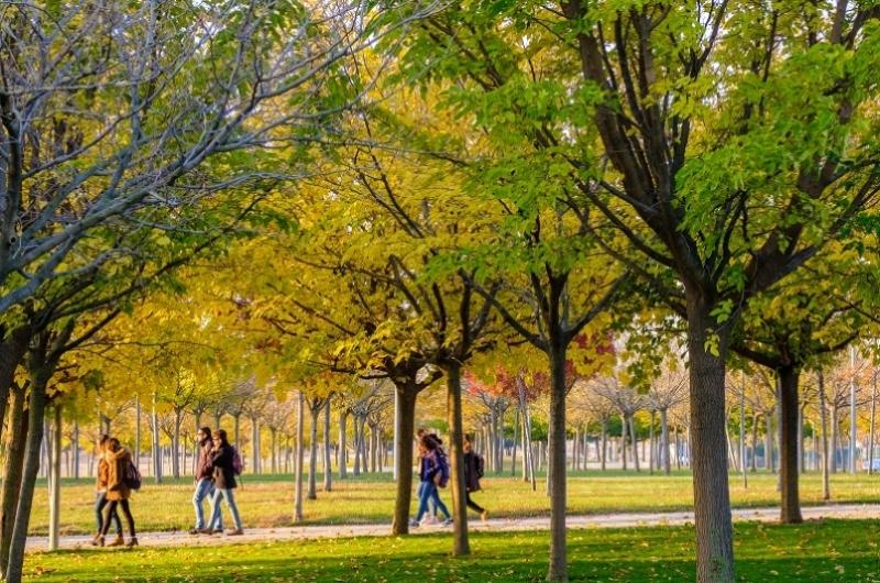 Campus Villanueva de Gállego