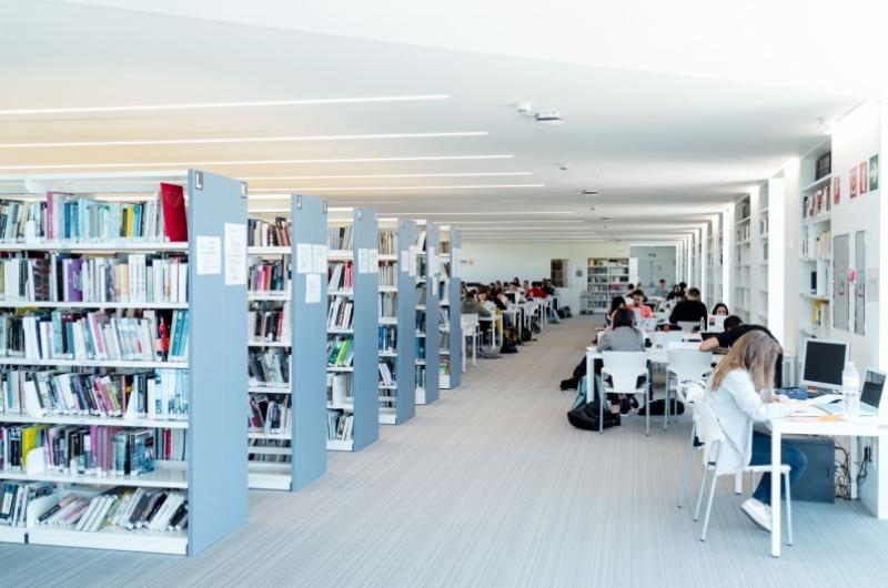 Alumnos estudiando en la biblioteca de la Universidad San Jorge