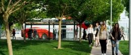 Ruta única. Autobús USJ